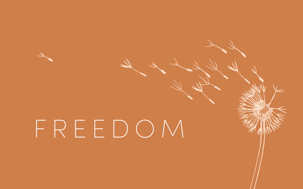 Download In Search of Christian Freedom EBook - video ...
